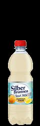 SilberBrunnen Sport Aktiv Grapefruit-Zitrone im20×0,5l-Kischtle